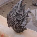 Balık Fıskiye