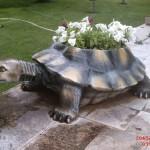 Kaplumbağa Saksı Fiber