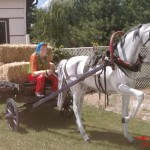 At Arabası Heykeli