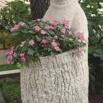 Beton Ayı çiçeklik