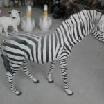 Küçük Zebra Biblo