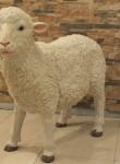 Kıbrıs Koyun Heykeli