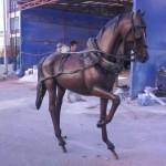 Kır At Arbası (3)