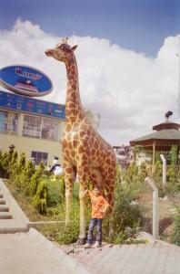 Zürafa Heykeli Fiber