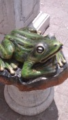 Beton Kurbağa Maketi