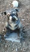 Bulldog Köpek Heykeli