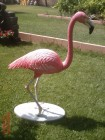 Küçük Flamingo Maketi
