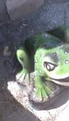 Kurbağa Heykeli