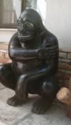 Orangutan Maketi